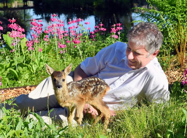 Peter FP with Twiggy roe fawn