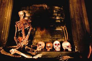 skeletons in the fireplace ghost vigil