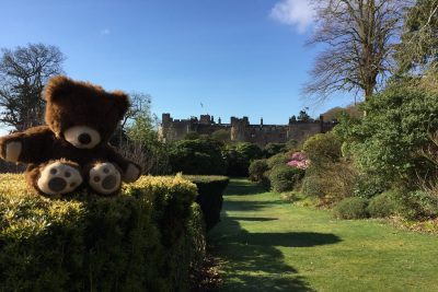 teddies go free at easter muncaster castle