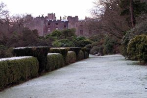Christmas Afternoon Tea at Muncaster