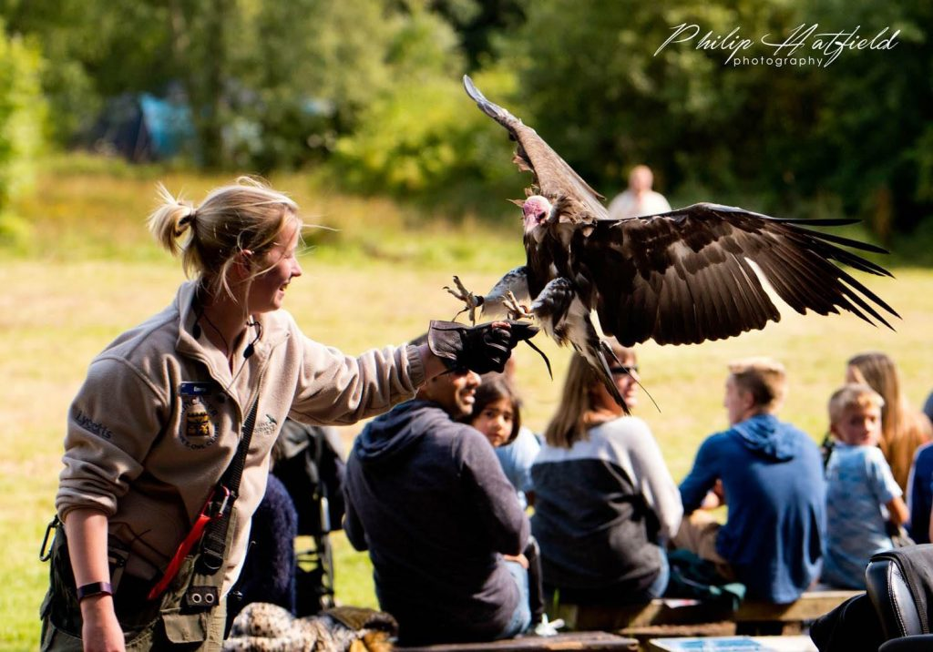 Emma and vulture photo by philip hatfield