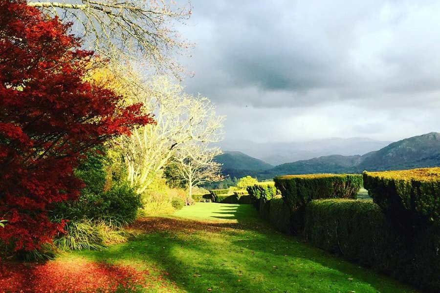 autumn colours in the Muncaster grounds