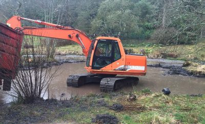 Conservation Matters - wildlife pond at Muncaster